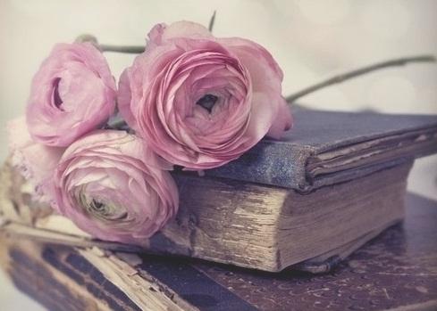 Libros y rosas (6)
